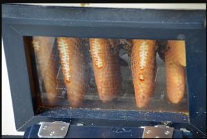 warre Beehive, bees, honeycomb