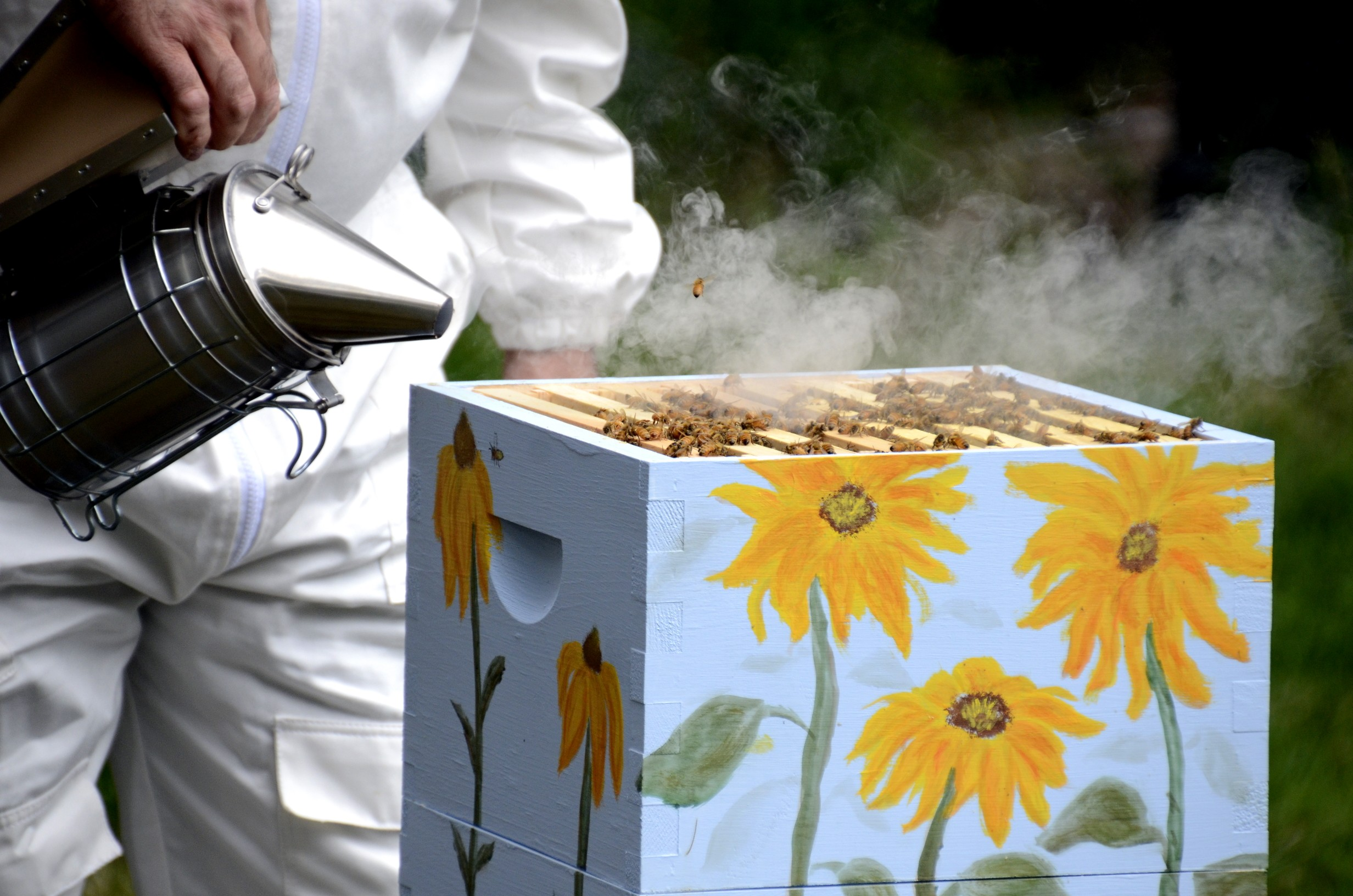 how to use a bee hive smoker