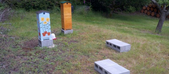 Building a foundation for your beehives