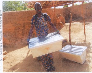 World Vision, Mali Africa, Beehives, Beekeeping, African Bees