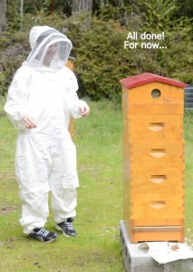 Langstroth western beehive