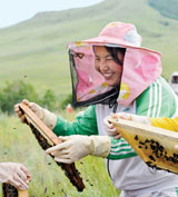 World Vision Beehives